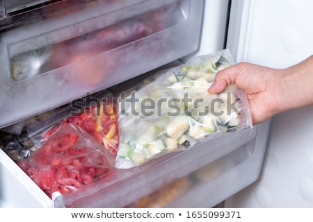 Freezer stock photo © fuzzbones0