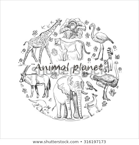 Hand drawn Save animal planet Stock photo © netkov1