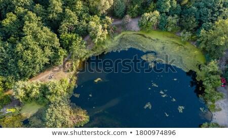 view · lago · campo · da · golf · acqua · foresta · estate - foto d'archivio © lunamarina