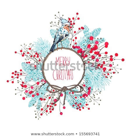 Christmas card with red berries and birds, vector Stock photo © beaubelle