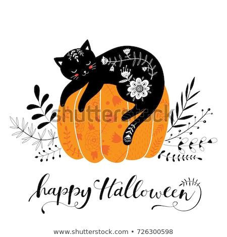猫 · ハロウィン · 漫画 · カボチャ · 孤立した - ストックフォト © morphart