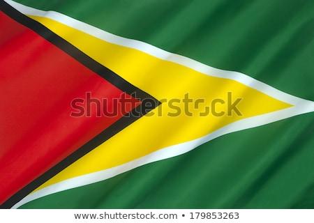 Verenigd Koninkrijk Guyana vlaggen puzzel geïsoleerd witte Stockfoto © Istanbul2009
