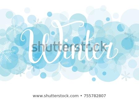 Invierno hermosa ropa cara Foto stock © hsfelix