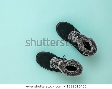 Fur shoes Stock photo © dash