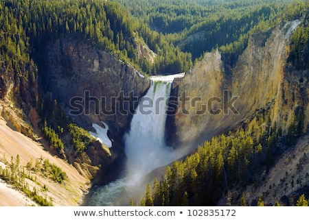 yellowstone river grand canyon of wyomings national park stock photo © cboswell