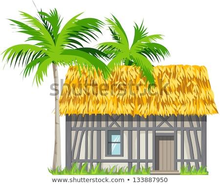 Kunyhó tető ajtó illusztráció ház otthon Stock fotó © bluering