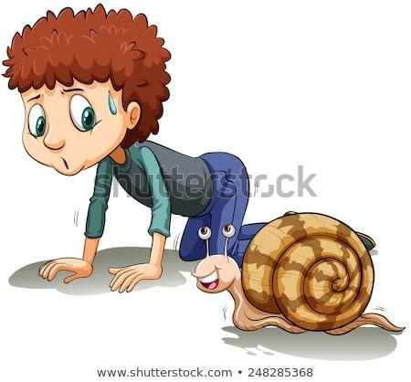 pequeno · caracol · desenho · animado · ilustração · vetor - foto stock © bluering