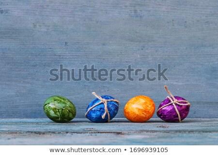 Négy lila tojások fészek illusztráció természet Stock fotó © bluering