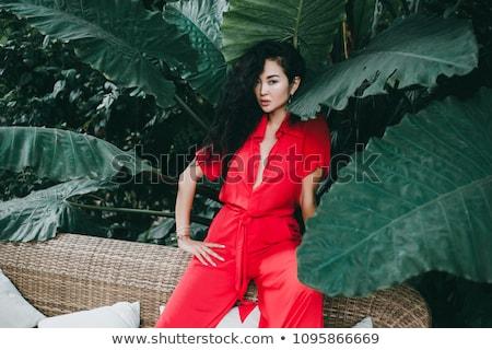 Portre esmer kadın siyah elbise poz Stok fotoğraf © deandrobot