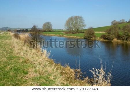 Drain Engeland hemel water bomen Blauw Stockfoto © latent