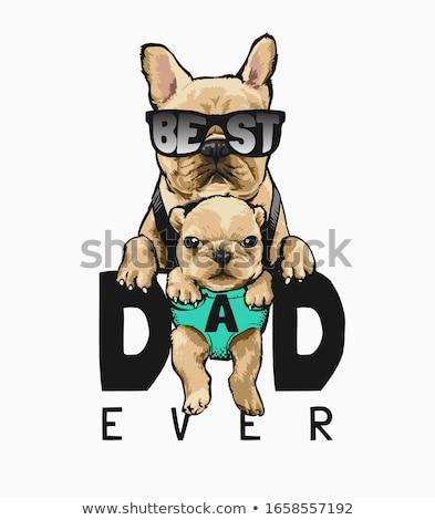 szeretet · kutyák · póló · vektor · rajz · fehér - stock fotó © pcanzo