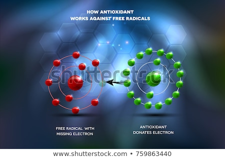 Cell and how antioxidant works against free radicals Stock photo © Tefi