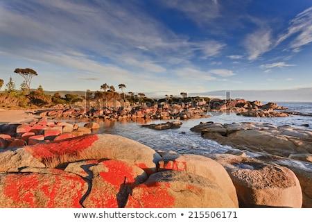 природы · оранжевый · океана · синий · красный · побережье - Сток-фото © artistrobd