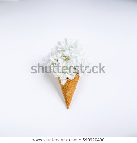 Lovely unique flower in ice cream cone on white background. Flat Stock photo © Leonidtit