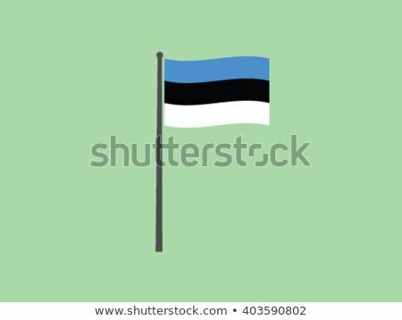 Vlag Estland geïsoleerd witte 3d illustration label Stockfoto © MikhailMishchenko