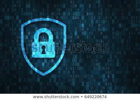 Privacy protezione 3D abstract stile illustrazione Foto d'archivio © 72soul