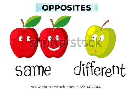 Opposite Word on Green Background Stock photo © bluering