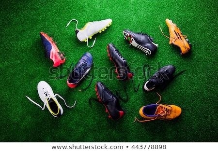 Piłka nożna Francja kolory zielona trawa piłka nożna charakter Zdjęcia stock © wavebreak_media