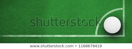 Digitálisan generált fehér bőr futball feketefehér Stock fotó © wavebreak_media