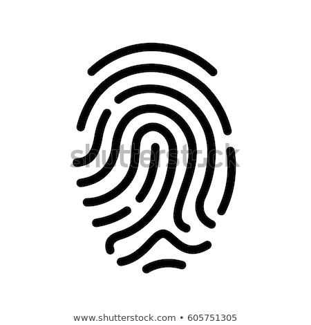 Dedo impresión aislado blanco tecnología seguridad Foto stock © kitch