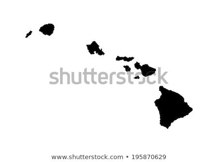 Hawaii vektor térkép magas részletes sziluett Stock fotó © kyryloff