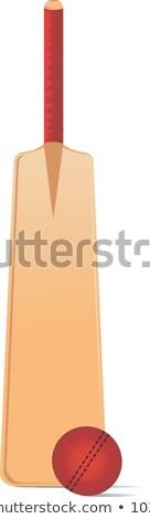 Blue cricket bats man vector illustration. Stock photo © Vicasso