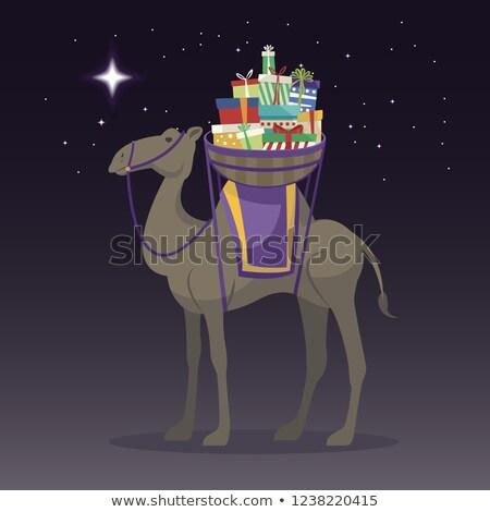 Feliz dia camelo presentes estrela fundo Foto stock © Imaagio
