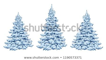 クリスマス · 凍結 · 緑 · 赤 · ツリー - ストックフォト © limbi007