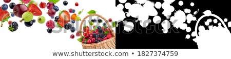 set · diverso · frutti · di · bosco · isolato · bianco · frutta - foto d'archivio © xamtiw