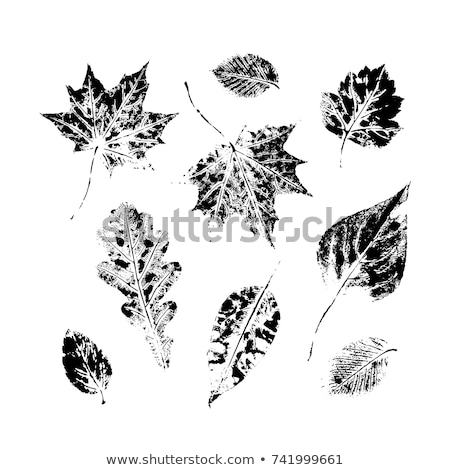 Autumn Tree with Dry Leaves Sign Isolated Vector Stock photo © robuart