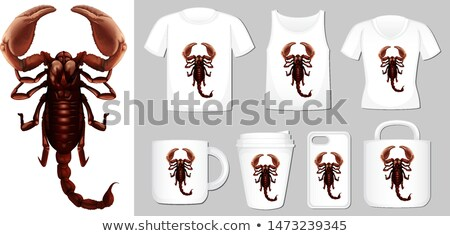 Graphic of scorpion on different product templates Stock photo © bluering