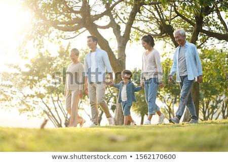 дедушка и бабушка ходьбе зеленый парка внук вектора Сток-фото © robuart