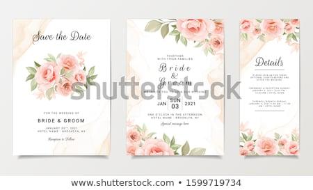 Свадебная · церемония · вид · сзади · иллюстрация · женщины · священник · женщину - Сток-фото © sarts