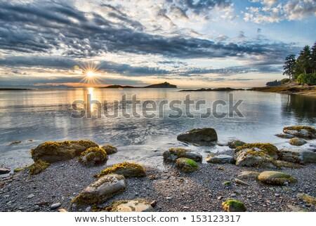 British Columbia coastline Stock photo © photoblueice