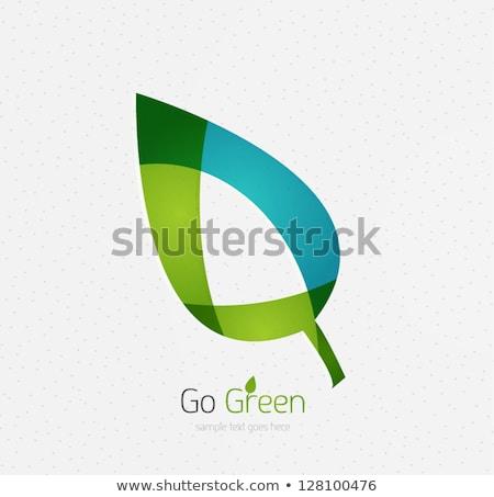 Abstrato verde eco ícones carro edifício Foto stock © pathakdesigner