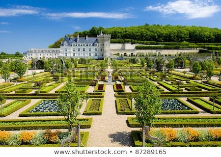 villandry castle with garden indre et loire centre france stock photo © phbcz