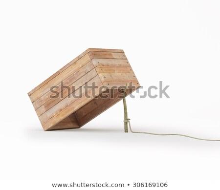 Prins cutie femeie fericit industrie lucrător Imagine de stoc © photography33