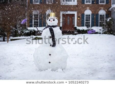 nieve · cubierto · zanahoria - foto stock © zzve