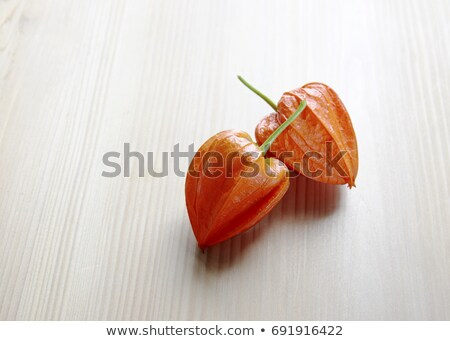 Stock photo: Chinese lantern, Physalis alkekengi, Physalis franchetii,