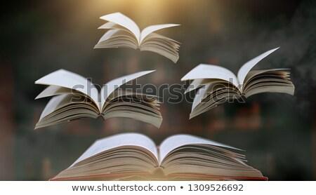 Livros voar céu papel escolas projeto Foto stock © FrameAngel