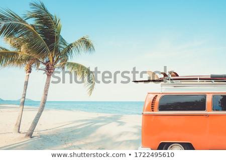 sörf · yaşam · tarzı · güzel · seksi · kadın · plaj - stok fotoğraf © jarin13