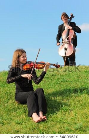 gyönyörű · lány · hegedűművész · fehér · mosoly · szépség · jókedv - stock fotó © paha_l