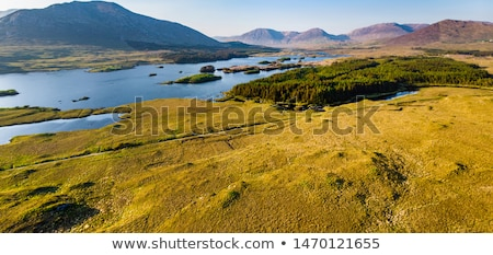 view to lake and farmland at connemara in ireland Stock photo © dolgachov