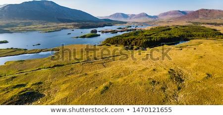 halszem · Írország · vidék · tájkép · eső · mező - stock fotó © dolgachov