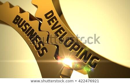Arany fémes fogaskerekek javít hatásfok illusztráció Stock fotó © tashatuvango