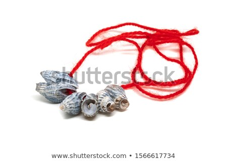 necklaces and crafts of sea shells Stock photo © lunamarina