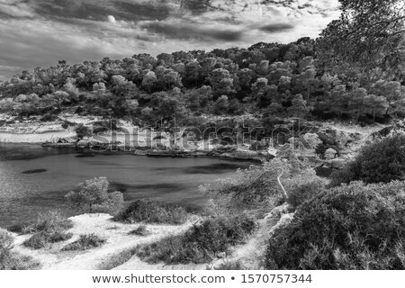 île Espagne riche vert transparent Photo stock © amok