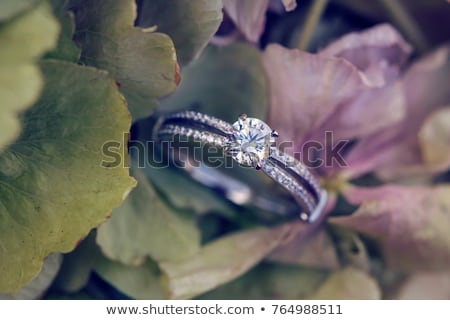 wedding gold rings on a silver plate stock photo © ruslanshramko