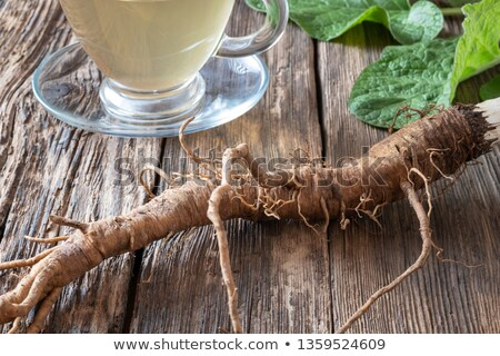 Burdock roots on a table, with tea in the background Stock photo © madeleine_steinbach