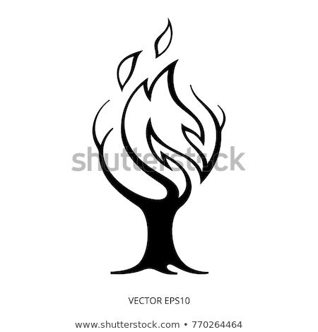 Tűz égő fa ikon skicc illusztráció Stock fotó © pikepicture